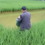 IFC Injects $20M In China Listed Rural Credit Cooperative