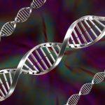 Matrix, SAIF Lead $15M Round In Chinese Genetic Start-up GrandOmics
